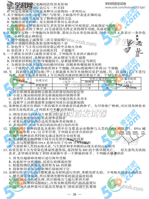 2013年江苏高考生物试题及答案