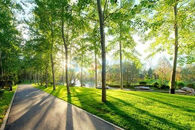 2016高考英语作文:保护环境 建设节能社会